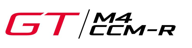 Naming GT M4 CCM-R